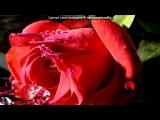 «))))))))))цветочки **» под музыку  Саундтрек из Шрек 1 - Алелуя [muzmo.ruдрузья,слушая песню вспомните ту сцену с мультика.это трогательно.я плакала.. Picrolla